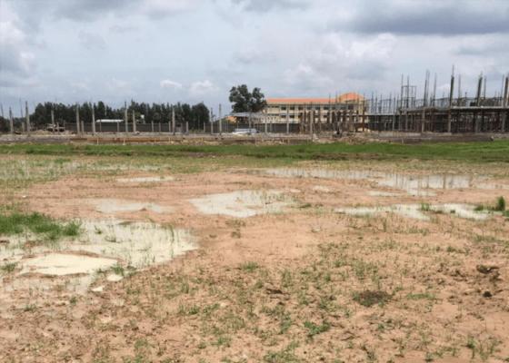 Đất trồng cây lâu năm có xây nhà được không?