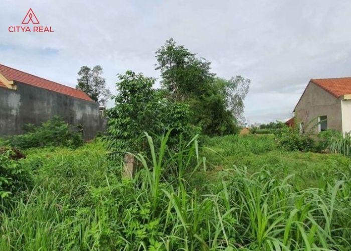 Đất Bhk Và Những Quy định Bạn Cần Biết