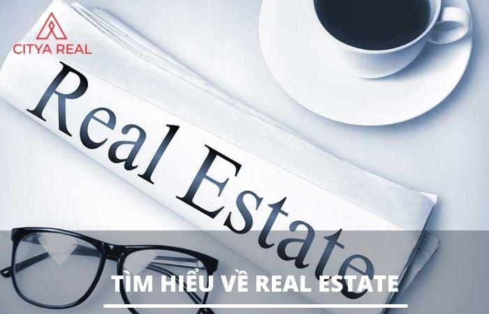 Real Estate La Gi