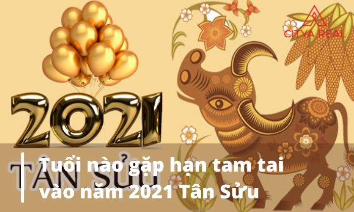 Tuổi nào gặp hạn tam tai vào năm 2021 Tân Sửu